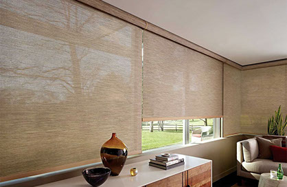 Hunter Douglas Duolite